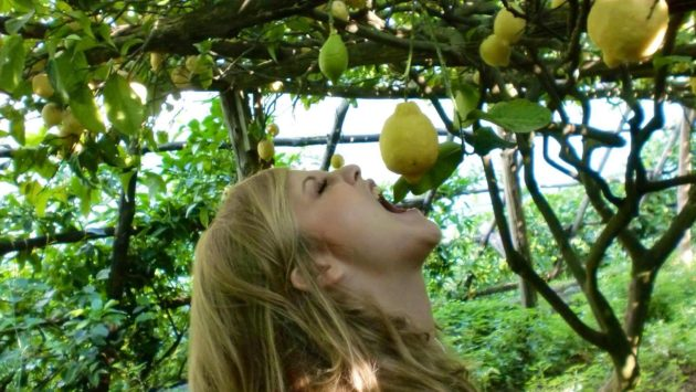 limone amalfi igp vitaminac virus cura frutta alimentazione immunitario