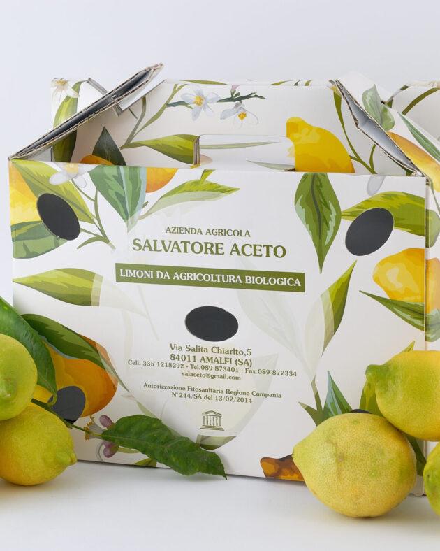 limoni amalfi positano spedizione delivery italia campania napoli